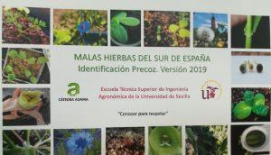 Curso de identificación precoz de malas hierbas