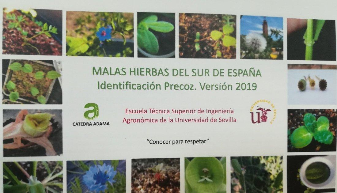 DeCampo Ingenieros en el Curso de identificación precoz de malas hierbas